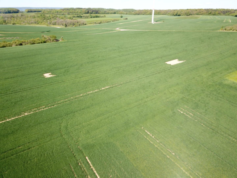 Anlage von Feldfenstern im Ackerland